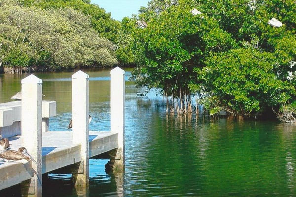 Mangrove Boatramp