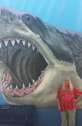 shark image272